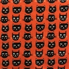 GC 8051-Orange Cat Faces