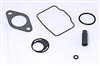 555605 Carb Rebuild Kit