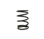 "Dyno Box Stock LEGALITY TESTED BY DYNO Clone Valve Spring (10.8lbs @ .850"" spring height) Hardened Green Stripe (each)"