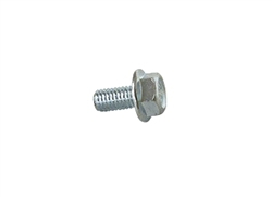 Blower Housing Flange Bolt (6x12 mm)