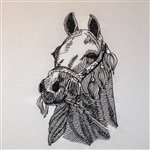 Arabian Horse Head with Bridle