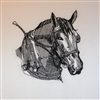 Percheron Horse Head with Harness
