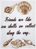 Shells and Friends