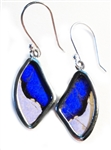 Small Wing EarringsSterling Silver