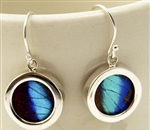 Round Butterfly Earrings