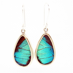 Oblong Butterfly Earrings