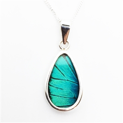 Oblong Butterfly Wing Pendants