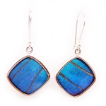 Square Butterfly Wing Earrings