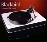 Dr. Feickert Blackbird Deluxe TS-MXX Turntable