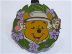 Disney Trading Pin 39061 DLR - Global Lanyard Series 3 (Pooh Professions - Safari Pooh)