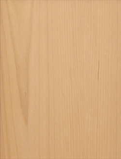 Slab Sample Cabinet Door