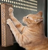 12 Stretch & Scratch Pads Free Shipping!