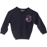 UNISEX ADULT NAVY V-NECK PULLOVER