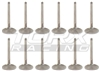 Torx Racing Intake & Exhaust valve set Sea Doo
