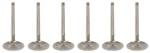 Torx Racing Exhaust Valve Set Sea Doo
