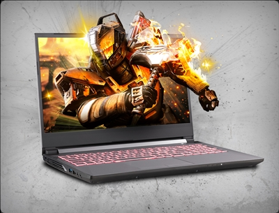 "Sager NP6856 (CLEVO NH58RCQ) 15.6"", nVidia GTX 1660Ti 6GB, 9th Gen Intel Core i7-9750H"
