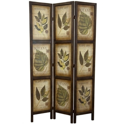 6 ft. Double Sided Vintage Botanic Printed Wood Room Divider