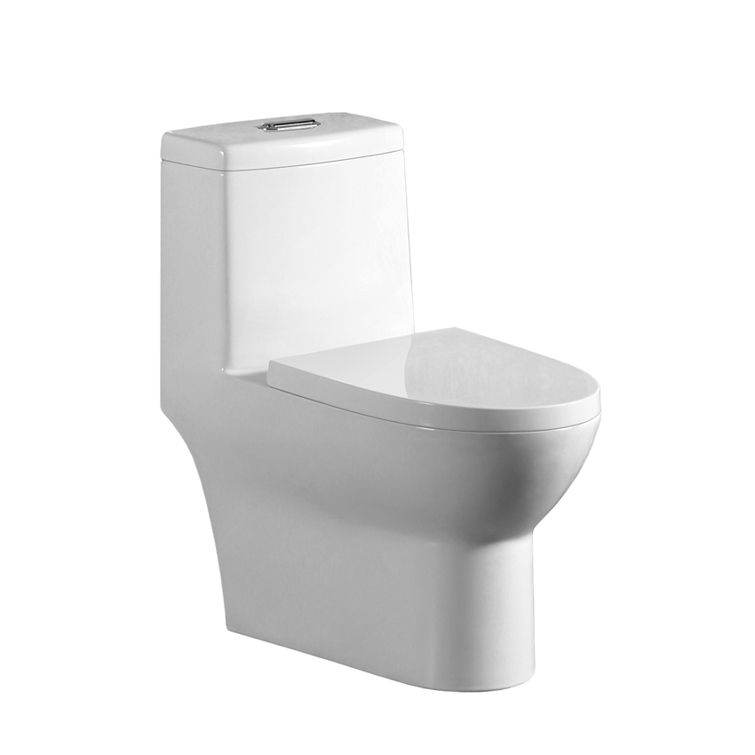 2 In One Toilet Seat.  Binli BL 153 OPT One Piece Toilet 1 28 0 9 GPF