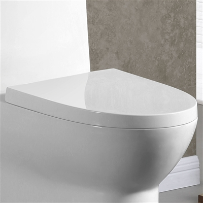 SoftClose Toilet Seat for Binli 153