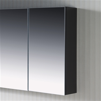 Frameless Mirror Cabinet 12