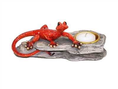 Red gecko on rock