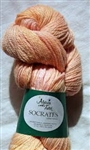 Alpaca With A Twist Socrates Sock Yarn