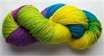 Great Adirondack Silky Sock Yarn
