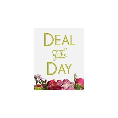 Deal Of The Day