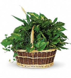Garden Basket-Large