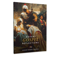 2020 Advent Gospel Reflections