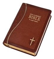 NAB Gift Bible, brown
