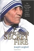Mother Teresa's Secret Fire: The Encounter That Changed Her Life, and How It Can Transform Your Own