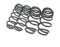 034Motorsport Dynamic+ Performance Lowering Springs
