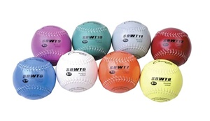 Weighted Training Softballs Set