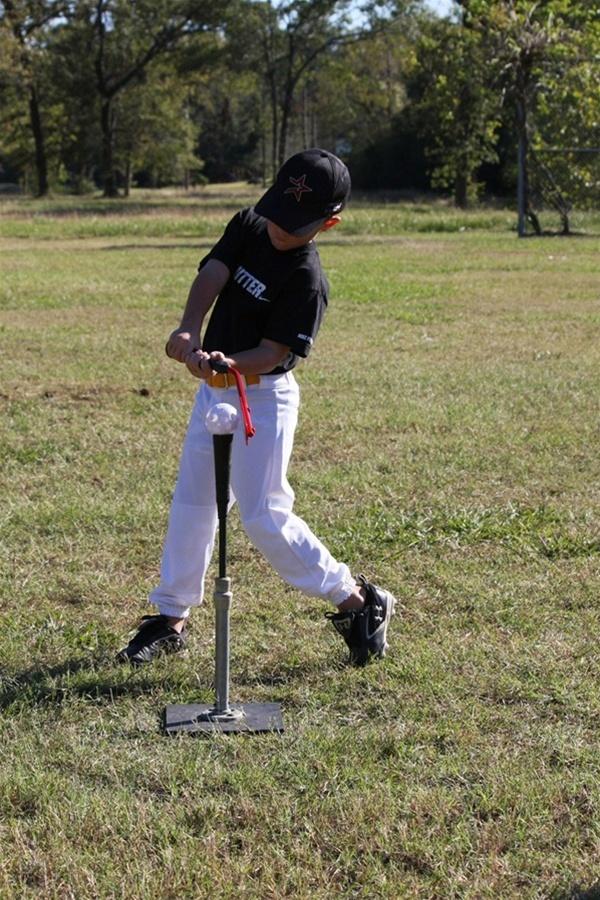 The Insider Bat Baseball Swing Training Bat