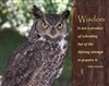 Wisdom - Motivational Poster - Owl