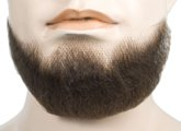 Human Hair 5 Point Beard