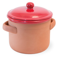 Red Cherry Terracotta Large Pot