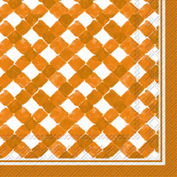 Rosanne Beck Gingham Orange Cocktail Napkin