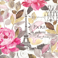 Jardin Paris Pink Cocktail Napkin
