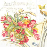 Belle La Jardiniere Cocktail Napkin