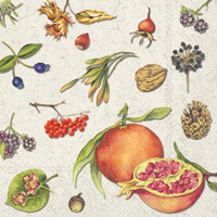Autumn Fruits Cocktail Napkin