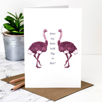 Coulson Macleod Ostrich Greeting Card