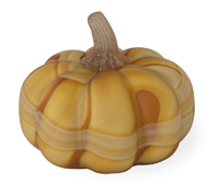 Caramel Delight Medium Pumpkin