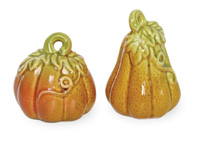 Autumn Days Gourd Salt & Pepper Set