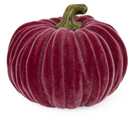 Large Velvet Pumpkin Burgundy