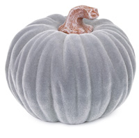 Medium Velvet Pumpkin Grey