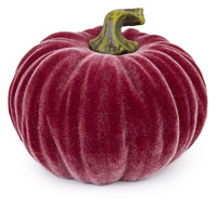 Medium Velvet Pumpkin Burgundy