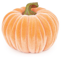 Medium Velvet Pumpkin Orange
