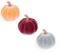 Mini Velvet Pumpkins (Set of 12)